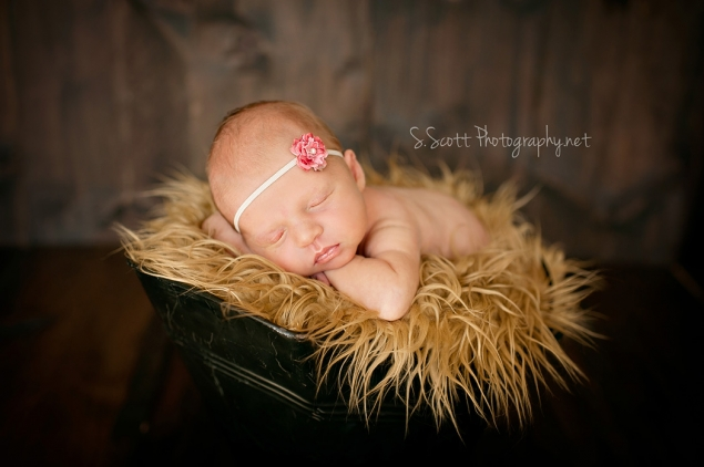 Just fyi emma newborn zanesville ohio newborn photographer
